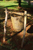 Escaninho de madeira da maca em um caminho Fotos de Stock