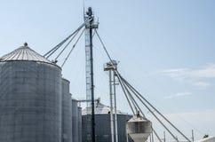 Escaninhos agriculturais da grão Imagem de Stock
