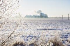 Escaninhos da grão no inverno Fotografia de Stock Royalty Free