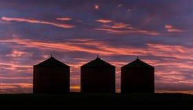 Escaninhos da grão no por do sol Fotografia de Stock