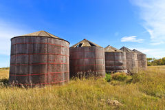 Escaninhos de armazenamento de madeira da grão Imagem de Stock Royalty Free