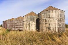 Escaninhos de armazenamento de madeira da grão Foto de Stock Royalty Free