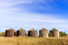 Escaninhos de armazenamento de madeira da grão Fotografia de Stock Royalty Free