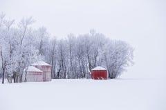 Escaninhos vermelhos da grão na paisagem branca do inverno Fotografia de Stock
