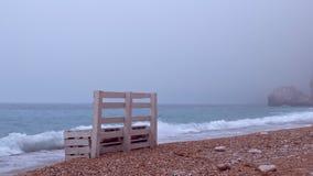 Escantillones solos en la orilla de la playa del mar almacen de metraje de vídeo