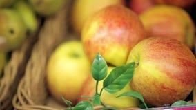 Escaparate con las porciones de manzanas metrajes