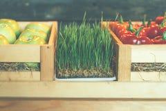 Escaparate con las verduras y los microgreens en cajas de madera fotografía de archivo