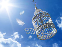 Escape à liberdade - conceito Imagens de Stock