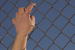 Escape. A person attempting an escape over a chain link fence royalty free stock image