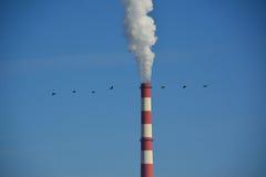 Escape da poluição Fotos de Stock