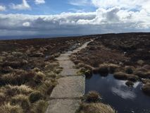 Escape de Dartmoor fotos de stock