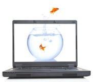 Escape do Goldfish imagens de stock royalty free