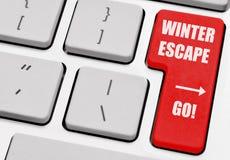 Escape do inverno Fotos de Stock Royalty Free