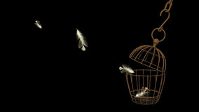 Escape. Jail escape cage fly to the freedom royalty free stock photography