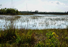 Escape Landscape Stock Photography