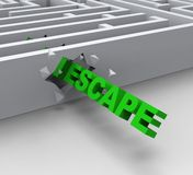 Escape From Maze Shows Liberated Stock Photos