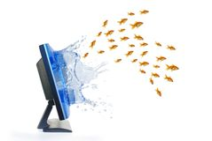 Escape from monitor. The escape from monitor of shoal the goldfish Royalty Free Stock Photos