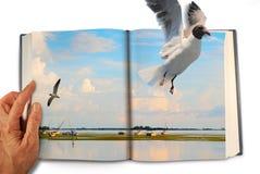 Escaping through magic book reading Royalty Free Stock Photography