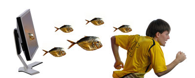 Escaping the man. Programmer escaping from fishes which leave  computer isolated on  white background Stock Photography