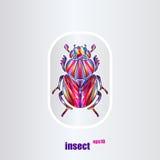 Escarabajo libre illustration