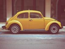 Escarabajo amarillo de Volkswagen Imagen de archivo libre de regalías