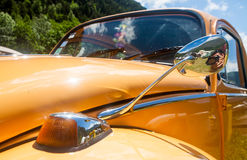 Escarabajo anaranjado en un día soleado Imagen de archivo libre de regalías