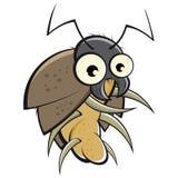 Escarabajo de la historieta Fotos de archivo