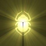Escarabajo de oro stock de ilustración