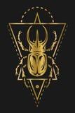 Escarabajo de rinoceronte y geométrico de oro Imágenes de archivo libres de regalías