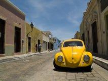 Escarabajo de Volkswagen Imagen de archivo libre de regalías