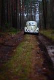Escarabajo 1957 de VW Imagen de archivo libre de regalías