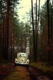 Escarabajo 1957 de VW Fotos de archivo