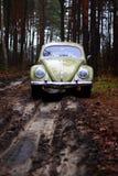 Escarabajo 1957 de VW Foto de archivo libre de regalías