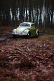 Escarabajo 1957 de VW Fotografía de archivo libre de regalías