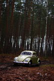 Escarabajo 1957 de VW Foto de archivo