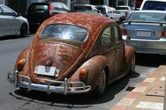 Escarabajo del estilo de la rata Imagen de archivo libre de regalías