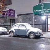 Escarabajo en Brooklyn Foto de archivo libre de regalías