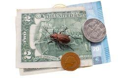 Escarabajo molido en la cuenta del billete de d?lar dos al lado de peque?as monedas de Bosnia y de Herzogovina, Islandia, Europa foto de archivo libre de regalías