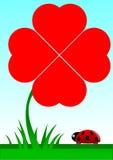 Escarabajo que hace frente a un trébol rojo con cuatro hojas Imágenes de archivo libres de regalías