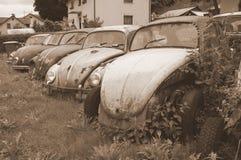 Escarabajos abandonados el aherrumbrar de Volkswagen Imagen de archivo