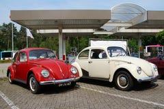 Escarabajos clásicos de Volkswagen Fotos de archivo