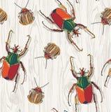 Escarabajos dibujados mano en fondo de madera Modelo inconsútil ilustración del vector