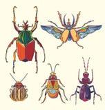 Escarabajos multicolores dibujados mano fijados Puede ser utilizado para la postal, stock de ilustración