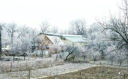 Escarcha blanca en árboles en el campo Imagen de archivo libre de regalías