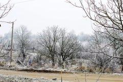 Escarcha blanca en árboles en el campo Foto de archivo libre de regalías