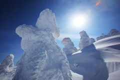 Escarcha suave, Mt.Zao en Japón Foto de archivo libre de regalías