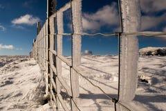 Escarchas del hielo Foto de archivo