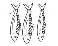 Escarcho del mar. Stockfish Fotos de archivo libres de regalías