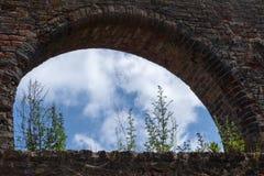 Escarde el crecimiento en el arco de la ventana de una pared de ladrillo en el monasterio Fotos de archivo libres de regalías