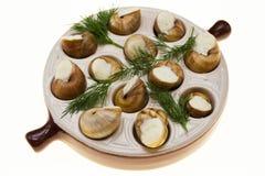 Escargot用黄油和香料在煎锅,蜗牛法国纤巧  库存照片